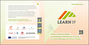 LEARN IP Flyer